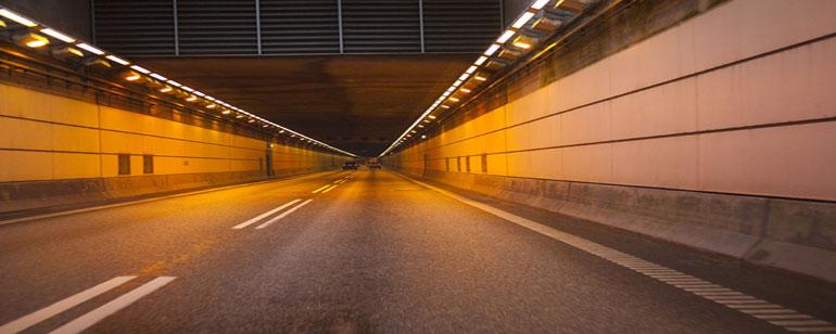 Tunnels kitten
